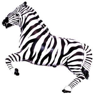 zebra-folgirovanny-shargel.by_.jpg
