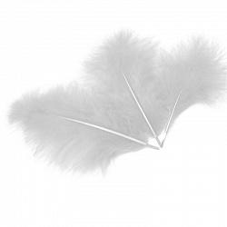 Перья белые для наполнения шара shargel.by
